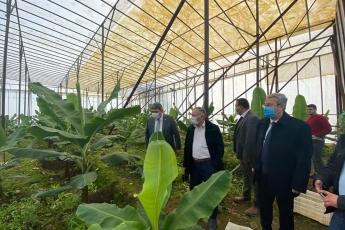 Mersin Bozyazı İlçemizde Muz Seracılığı yapan çiftçilerimizi ziyaret ettik... Sorunlarını dinledik.  Partimizin çözüm önerilerini aktardık.